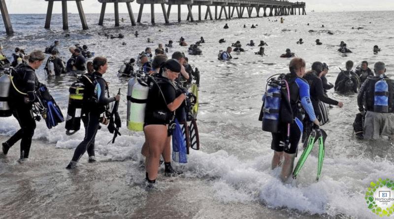 633 mergulhadores quebram o recorde de maior limpeza subaquática do mundo